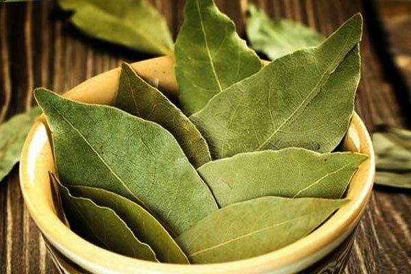 Лавровый лист - отличная приправа, которая придает приятный аромат блюду