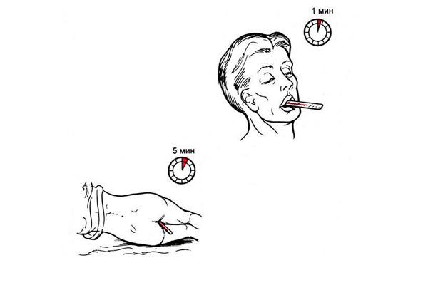 Измерение базальной температуры во рту и в прямой кишке