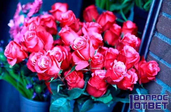 Розы стоят в вазе