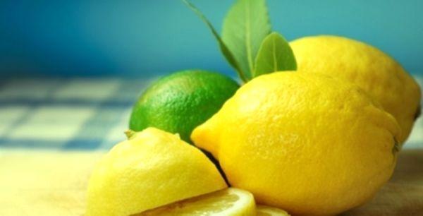 Как вырастить цитрусовое деревце и как ухаживать за лимоном в домашних условиях