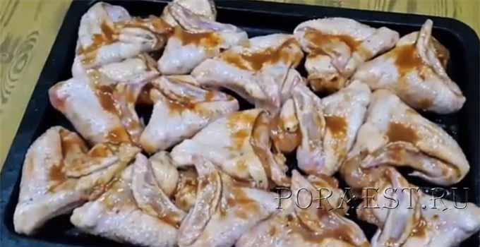 krylyshki-v-medovo-soevom-marinade