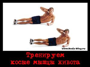 Накачивание косых мышц живота