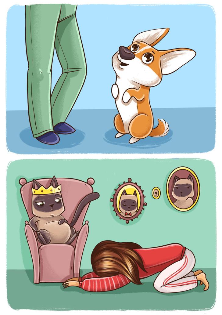 Комикс отом, почему собаки икошки все-таки сразных планет (Икак мыуживаемся вместе сними)