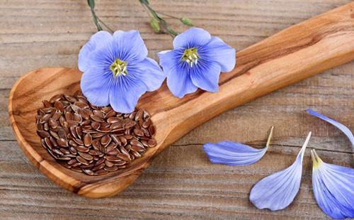 Небесно-голубой лён и его семена придадут вам лёгкости